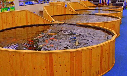 membrane epdm pentru ferme piscicole